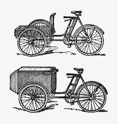 engraving rickshaw bike vector image