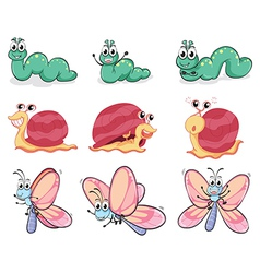 A caterpillar butterfly and a snail vector