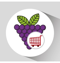 Grape cart shopping graphic vector