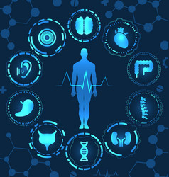 Medical health care human organs virtual body hi vector
