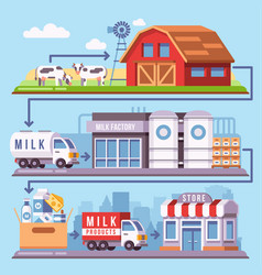 milk production processing from a dairy farm vector image