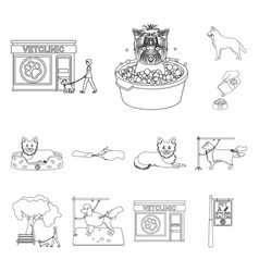 pet outline icons in set collection for design vector image