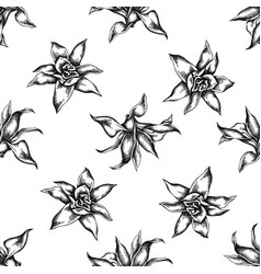 seamless pattern with black and white guzmania vector image