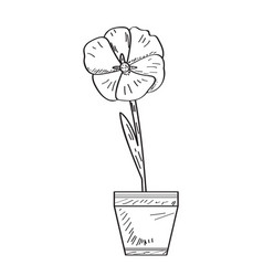 drawing of a flower retro style vector image