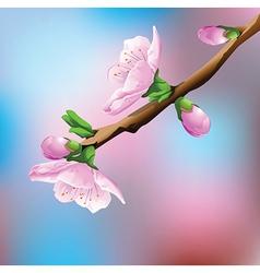Flower on branch vector