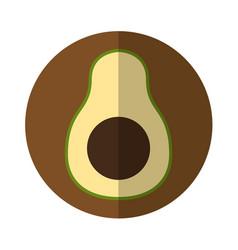 Avocado fresh vegetable isolated icon vector