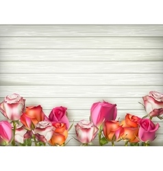 Valentines day background with roses EPS 10 vector image vector image