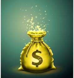 Bag money vector