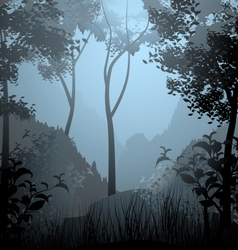 Cloud forest scene vector
