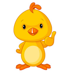 cute yellow baby chicken vector image vector image