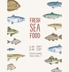 flyer template with fish or fresh seafood and vector image