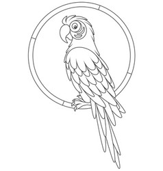 Funny parrot macaw resting vector