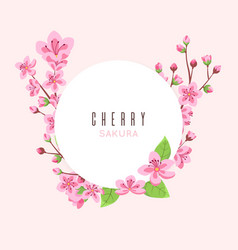 sakura blossom peach cherry flowers pink floral vector image