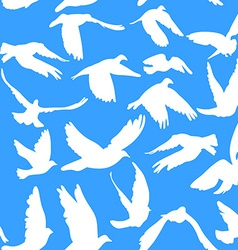 Doves and pigeons seamless pattern on blue vector image