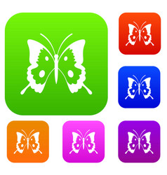 butterfly set collection vector image