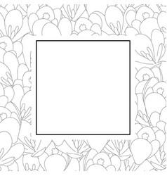 crocus flower outline banner card vector image