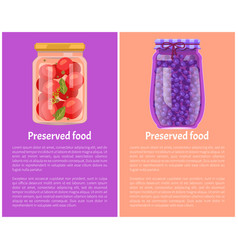 Preserved food posters tomatoes and blueberries vector