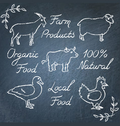 set of farm animals icons and lettering on vector image