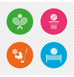 tennis rackets with ball basketball basket vector image