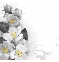 floral background in graphic styl vector image