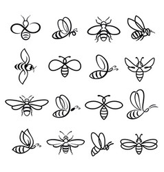 honey bee icons vector image vector image