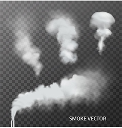 Set of realistic transparent smoke steam vector image vector image
