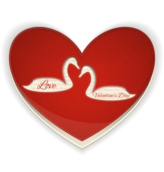 Valentines Heart with Swans vector image vector image