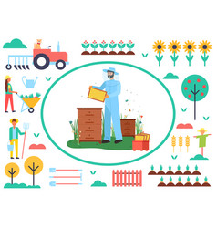 beekeeping business farming man with bees vector image
