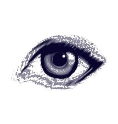 Human etched eye vector