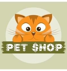 Pet shop emblem Orange cat on animal store banner vector image