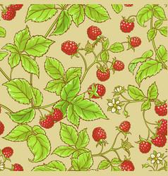 Raspberry pattern vector