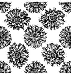 seamless pattern with black and white gerbera vector image