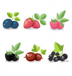 summer berry set vector image