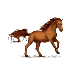 Horse running Equine horserace sport symbol vector image vector image