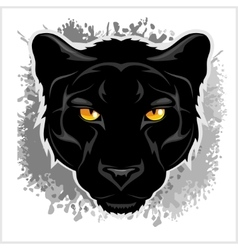 Black panther head - on grunge background vector