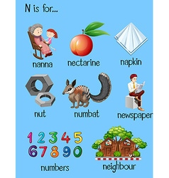 Different words for letter N vector