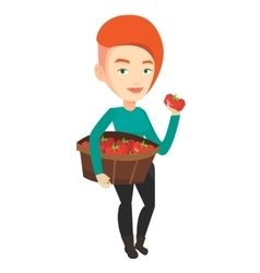 Farmer collecting tomatoes vector