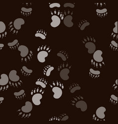 footmark of the bear paw vector image