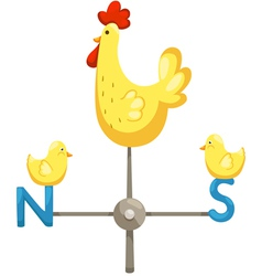 isolated chicken vector image