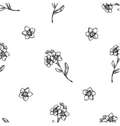 seamless pattern with black and white forget me vector image