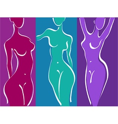 Slim woman body vector image