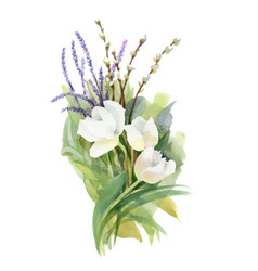 hand drawn bouquet of flowers isolated on white vector image vector image