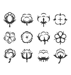 cotton flowers icon set isolated from vector image
