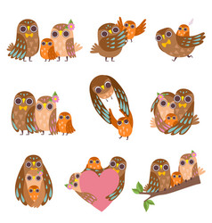 Family owls set father mother and their baby vector
