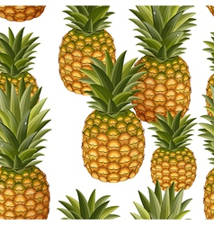 seamless texture of pineapple vector image