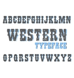 looking typeface shows curves on letters vector image vector image