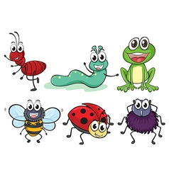 Various insects and animals vector image