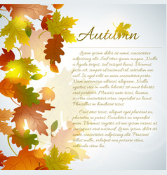 autumn faded leaves concept vector image
