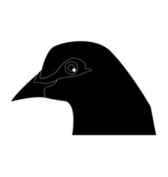 bird pigeon head animal peace icon vector image