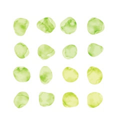 Green watercolor spots Stained petals Hand painted vector